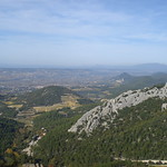 A view from the Dentelles hills