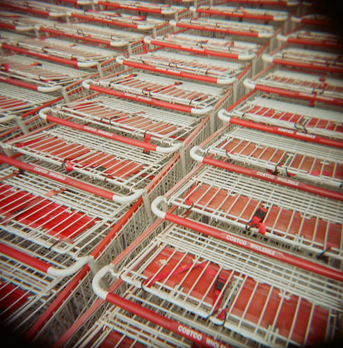 holga toycamera costco shoppingcarts yearinplastic