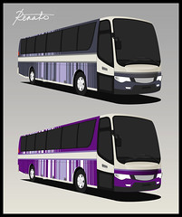 Vertical Lines - Bus Livery Design