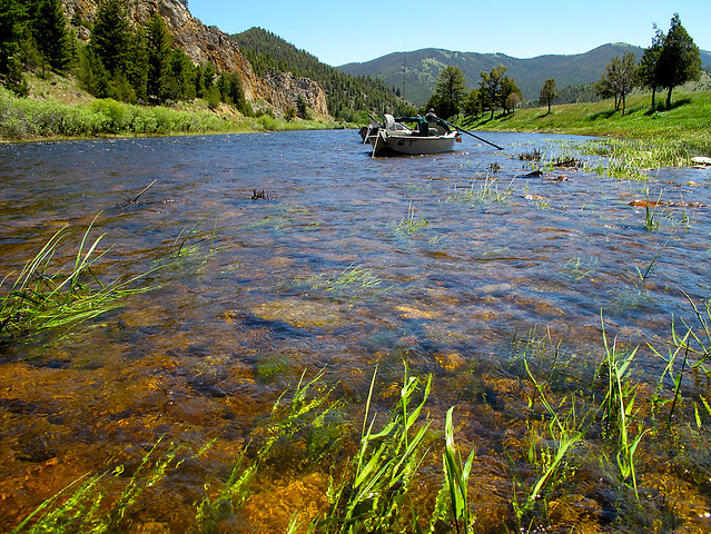 Photo for Big hole river fly fishing