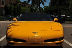 S W Florida 2009