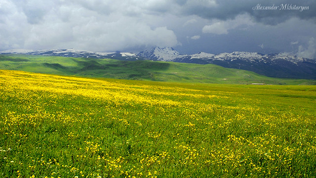 Header of Aragats