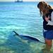 Dolphin Whisperer by akeii