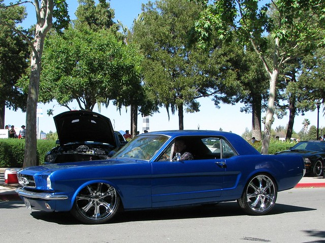 65 Ford Mustang together with 65 Mustang Drag Car besides Custom 65 Mustang Coupe further 65 Mustang Convertible in addition 1965 Ford Mustang Coupe Restomod. on 65 mustang navigation