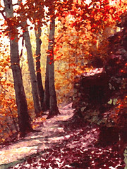 The Ledges in (Faux) Fall - 1976 - Originally Shot on Film