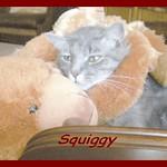 Squiggy