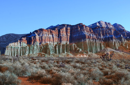 Daytrips from Las Vegas, day trips from Vegas - Red Rock Canyon