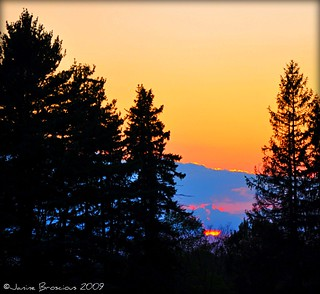 Black Forest Sunset