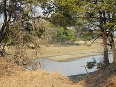 Zambia03SouthLuanga154