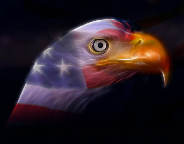 In Honor of Memorial Day 2009, the American Bald Eagle and ...