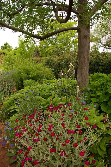 Daniel Stowe Botanical Garden Explore Tequilamike 39 S Photos Flickr Photo Sharing