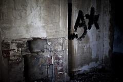 Abandoned House (08) - 21Mar09, Montcalm (France)