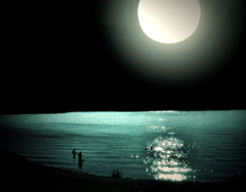 Moonlight Bathers