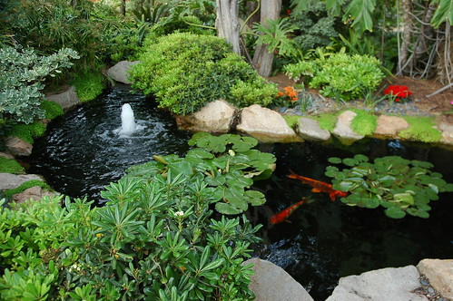 Koi Pond  Meditation Garden - Self-Realization Fellowship by Wonderlane
