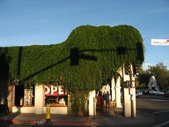 Ojai, California (8)