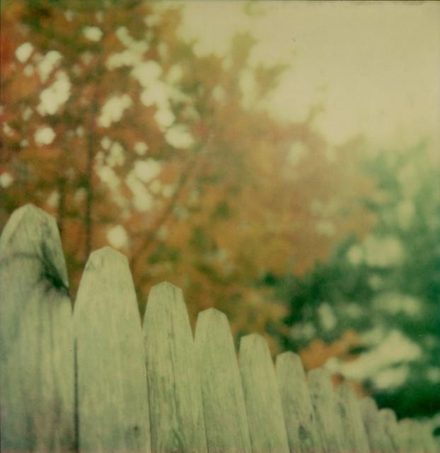 Suburban Stockade (Polaroid Week)