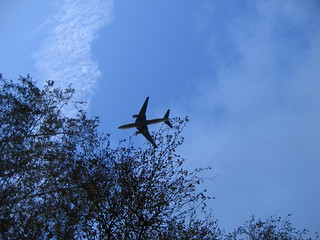 in the flight path (by: Dorine Ruter, creative commons license)