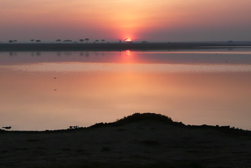 lake sunrise tanzania safari serengeti colorphotoaward theunforgettablepictures