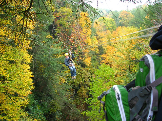 Zipline Canopy Tour Pricing - Tree Frog Canopy Tours