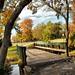 Autumn Bridge 2 by BACKYard Woods Explorer