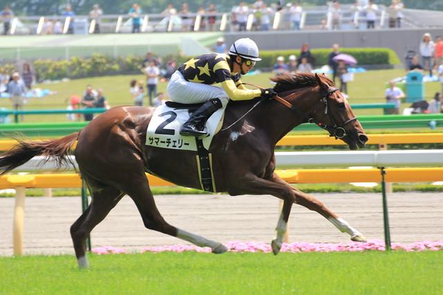 5R勝ち馬 サマーチェリー(蛯名正義)