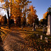 Autumn comes to Evergreen Cemetery by Cindy Farr-Weinfeld