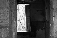 Abandoned House (06) - 21Mar09, Montcalm (France)