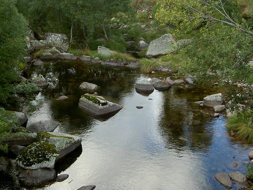Rio Balsemão no Sardinho