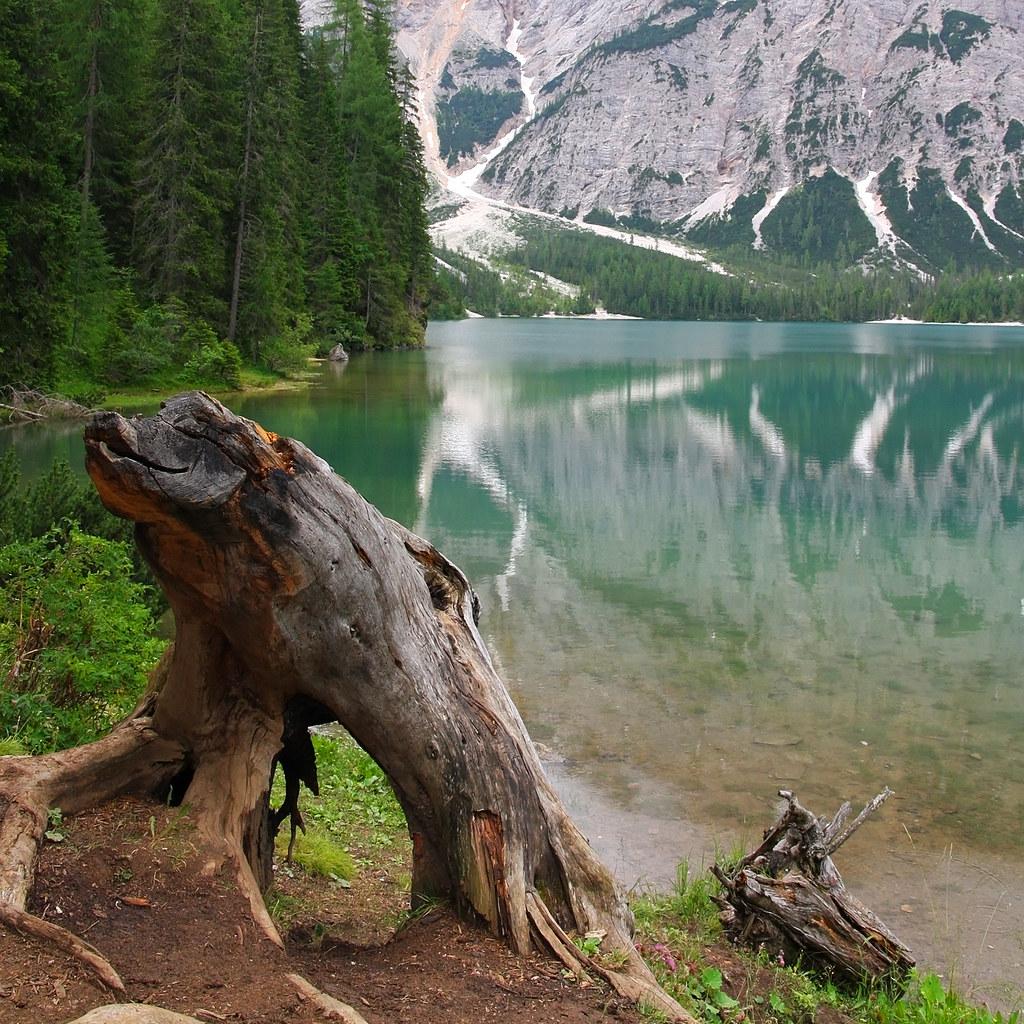 Scorcio sul lago