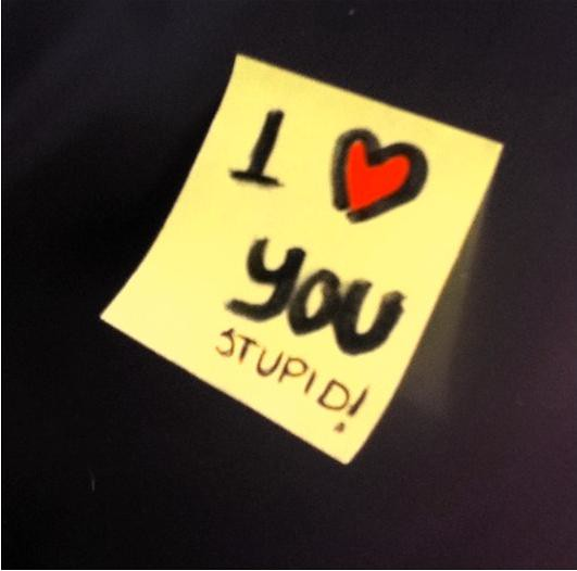 i love you  stupid