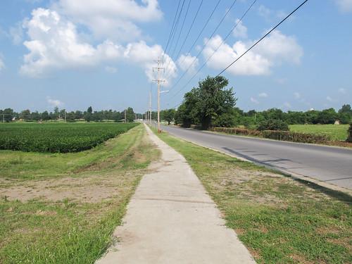 Out for a walk on a farmland sidewalk.
