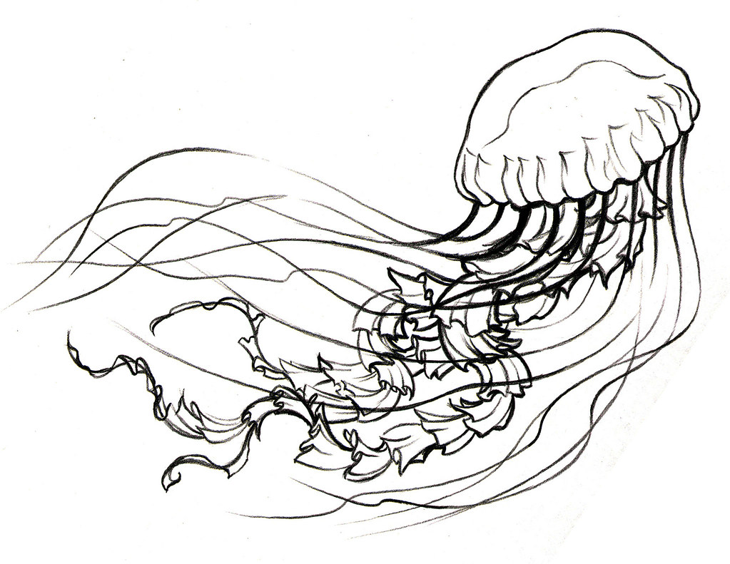 Free Coloring Pages Of J Is For Jellyfish