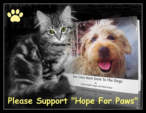 "Please Support ""Hope For Paws"""