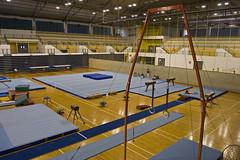 gymnastics, artistic gymnastics, trampolining, arena,
