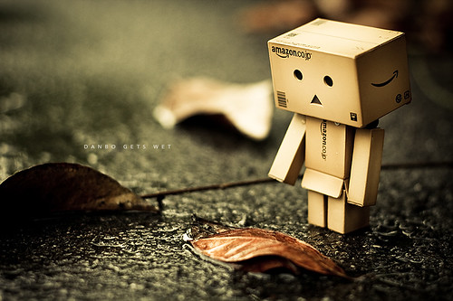 210/365: Danbo Gets Wet
