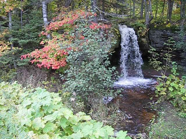 Scott  Falls Autumn Color Video