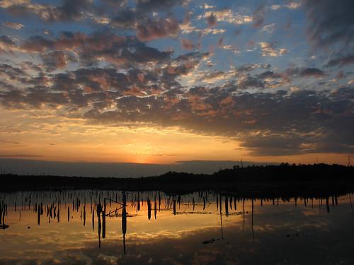 sunset reflection water nj chatsworth pinebarrens burlingtoncounty franklinparkerpreserve njcf newjerseyconservationfoundation