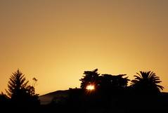 Eastside Sunrise