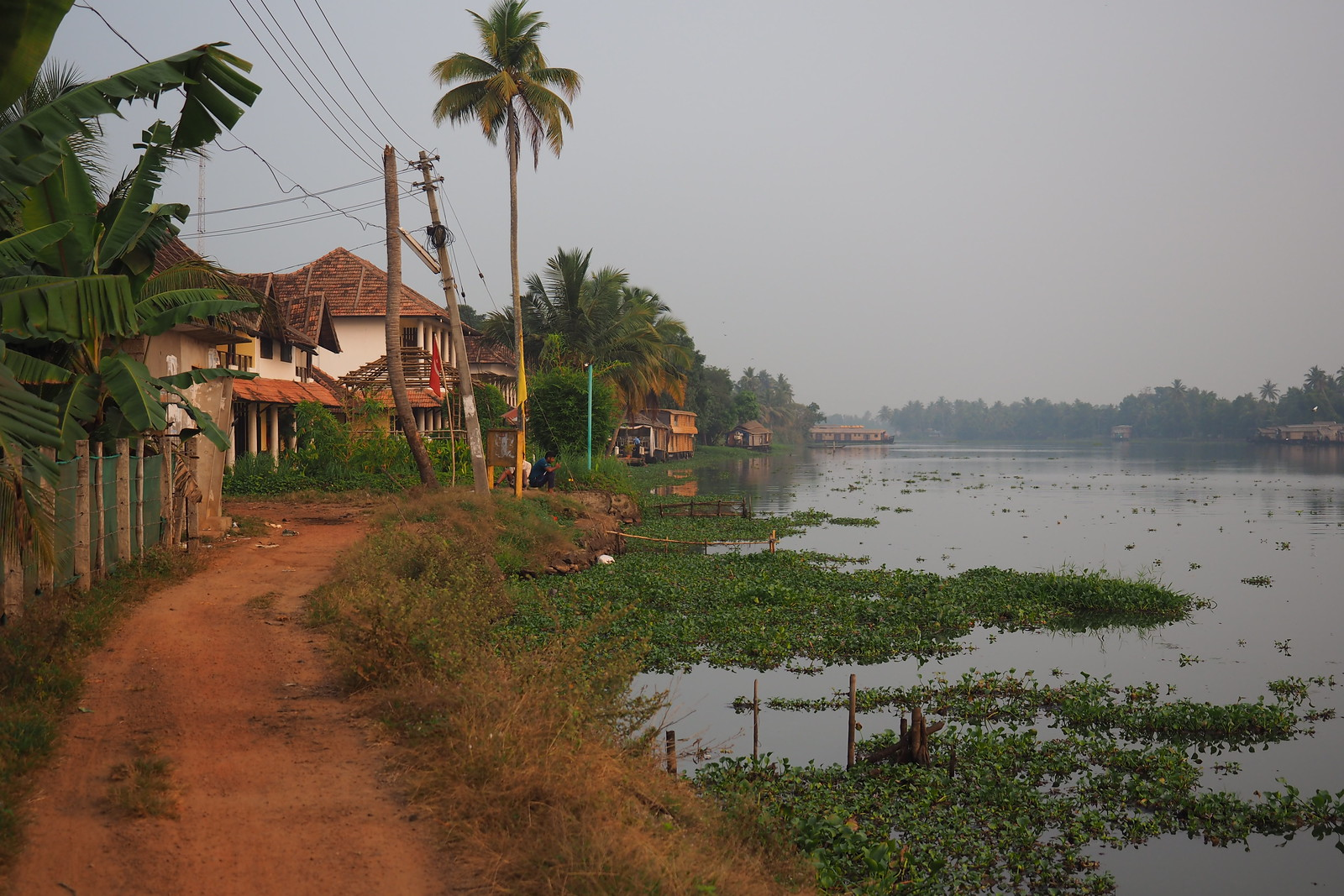 Indien, Keral, - Backwaters