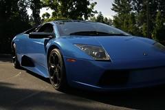 lamborghini reventã³n(0.0), automobile(1.0), automotive exterior(1.0), lamborghini(1.0), wheel(1.0), vehicle(1.0), performance car(1.0), automotive design(1.0), lamborghini(1.0), bumper(1.0), land vehicle(1.0), luxury vehicle(1.0), lamborghini murciã©lago(1.0), supercar(1.0), sports car(1.0),