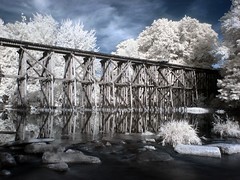 The Trestle Bridge in Hamilton