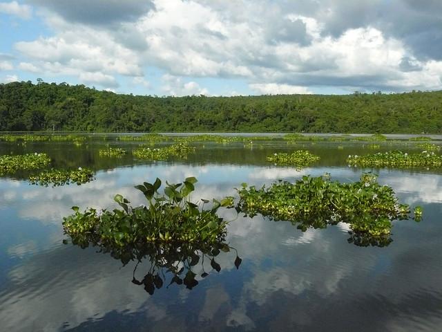 Lago Ravelobe, Parque Nacional de Ankarafantsika, Madagascar