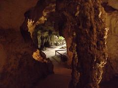 sea cave(0.0), stalactite(1.0), speleothem(1.0), cave(1.0), caving(1.0), stalagmite(1.0),