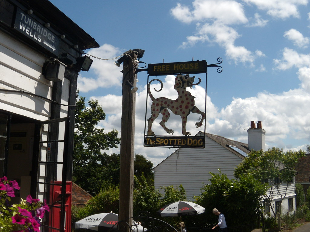 Spotted Dog sign Apparently this is a leopard that locals scathingly refer to as the spotted dog. Hence the pub's name. A trifle unfair. If I saw one of these coming towards me, I don't think I'd hang around to pat its head. Smarts Hill. Leigh to Tunbridge Wells