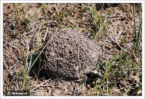 散落在草地上的浮石-砧子山