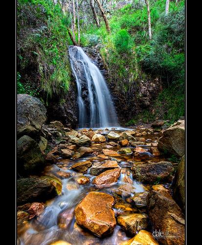 longexposure plant nature water flow waterfall explore adelaide canon5d southaustralia hdr 1740 adelaidehills waterfallgully mtlofty photomatix canon5dmark2