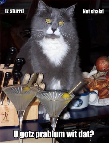 Bartender Cat (mine)