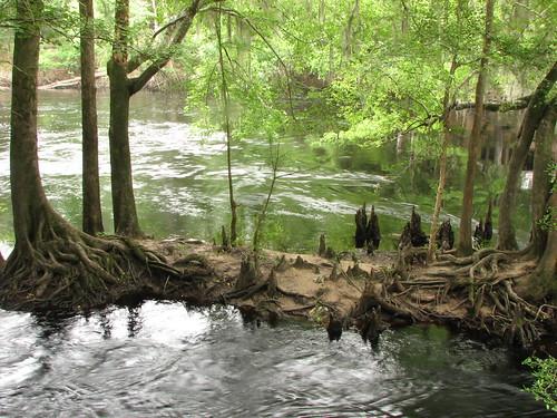 unitedstates florida olenostatepark highsprings