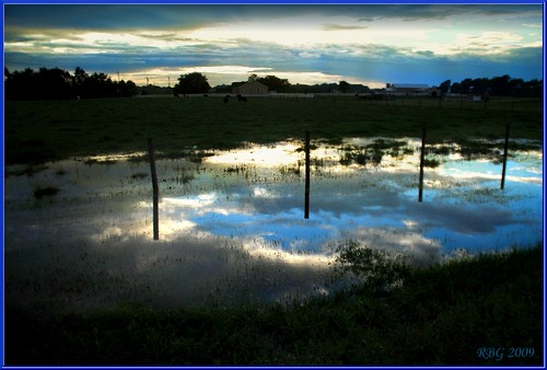 Farm Reflections