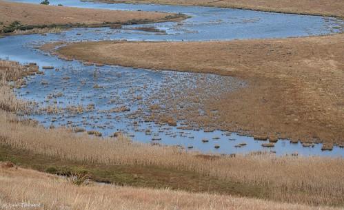 位於南非,長達232公里的恩格尼河。上游很乾淨,但是越接近出海口,水質變得越髒。(攝影:Joe Townsend提供。)